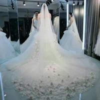 Wholesale Wedding Trails - 2016 Bride Married Wedding Veil 3M Long Trail Romantic Lace Rose Flower Appliques White Ivory Bridal Veil Wedding Accessories