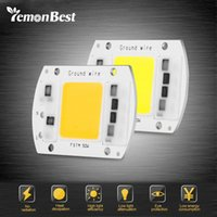 Venta al por mayor-LemonBest LED Bombilla de la lámpara de COB 50W 220V entrada Smart IC controlador apto para DIY LED Floodlight Spotlight frío / caliente blanco