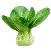 Wholesale Bok Choy Pak Choi Chinese White Cabbage Vegetable Seeds Easy growing Heirloom Seeds