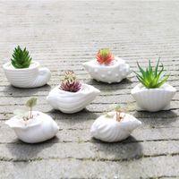 ingrosso giardino fiorito a fiore-6pcs / set Mini White Piccolo Vaso di fiori shell Forma ceramica Holder Pianta grassa Pot Fairy Garden Cactus Flower Vasi Planter