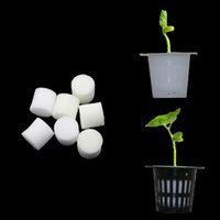 Wholesale Wholesale Hydroponic Pots - Soilless Hydroponic Vegetables Nursery Pots Nursery Sponge Flower Seed Cultivation Soilless Cultivation System Seed Trays