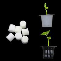 Kaufen Sie Im Großhandel Hydroponischer Blumentopf Online Aus China