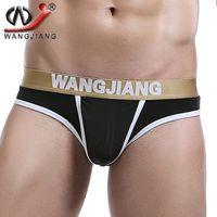 Wholesale wj brief mens underwear - Mini Slip Homme Sexy 2016 WJ Bulge Pouch Fashion Transparent Low Waist Underwear Mallas Hombre Mens Nylon Briefs