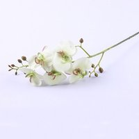 """Wholesale White Flower Arrangements For Home - Silk Fake artificial flower phalaenopsis orchid flowers in cream white green -30 """"Tall for lavender wedding romantic arrangement home decro"""