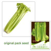 Wholesale Celery Seeds - 1 original pack 40 pcs Seeds Dry Celery Smallage Seeds, Apium Graveolens seeds C097 free shipping