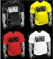 Wholesale Red Shirt Guy - Brand muscle guys Mens gyms T shirt bodybuilding and fitness men cotton singlets tops Plus size T-Shirt Short Sleeve Tshirt