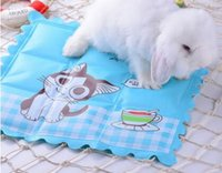 Wholesale Magic Dragon - Cold magic board dragon cat, rabbit bedding Dutch pig heat sink plate