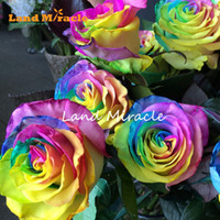 Wholesale planting wild flowers - Small Rainbow Rose Seeds, 100 Seeds Pack, Outdoor Plants Wild Shrub Rosa Rugosa Flower for Home & Garden & Balcony Plant