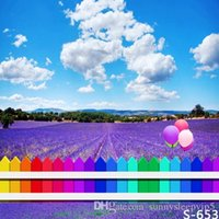 8x8ft Colorful Recinto Lavanda Field Vinyl Photography Backdrops Fotografia Studio Sfondo Fotografico Bambini Sfondo di nozze