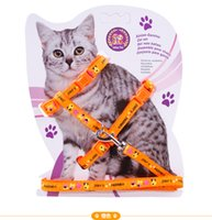 Frete grátis Brand New Nylon Pet Cat Doggie Puppy Dog Leash para cães Leads Harness Belt Cat Kitten Halter Collar Adjustable Traction Rope