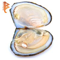 Wholesale Necklace Packing - BELAWANG Wholesale 6-7mm Oyster Pearl Individually Vacuum Packed Big Oyster With Pearls Cultured in Fresh Oyster Pearl Free Shipping