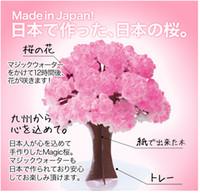 Wholesale Magic Paper Tree - iWish 2017 Visual 14x11cm Pink Big Grow Paper Magic Sakura Japanese Tree Magically Growing Trees Kit Desktop Cherry Blossom Christmas 10PCS