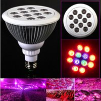 new led grow lights 2018 - New Arrival 85-265v 24W E27 Full spectrum plants red+blue Led Growth Light Hydroponic Bloom flowering LED grow lamps