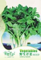 Wholesale Celery Seeds - 30 pcs bag Rare Perennial Wild Celery Seeds Vegetables, Easy Grow Courtyard Celery Seeds 3bags per lot