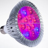 Wholesale E27 Red - Mars Hydro LED E27 Grow Light Lamp Veg Flower Hydroponics Plant Full Spectrum 15W for Indoor Plants