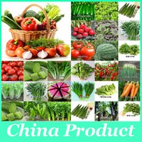 Wholesale 200 seeds pack onion chives carrot broccoli potato tomato Chinese parsley mix vegetable seeds and fruit seeds for garden