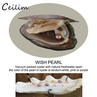 Wholesale Mysterious Black - Natural freshwater oyster round pearl individually vacuum packed different color pearl mysterious surprise birthday gift student experiment