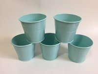 Wholesale Tin Plant Pot Wholesale - Cheap D9XH8CM Mini Garden pots Tin Succulents Planter Mini Buckets for small plant Light Blue SF-060