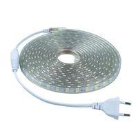 Wholesale Smd Waterproof Strip Lights - At a sale SMD 5050 AC 110V 220V led strip flexible light 2m 3m 4m 5m-25m+EU US Power Plug,60leds m Waterproof led light