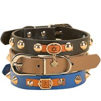 Rivet Cowhide Puppy Collar Moda Dog Cat Collar Pet Neck Strap Beautiful Small Dogs Cat Ornaments