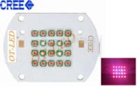 Wholesale Cree Xpe Grow Light - 60W Cree XPE XP-E Led Bulb Red(16PCS)+ Blue(4PCS) LED Emitter Plant Grow Light 25-27V 350mA~1800MA+AC85-265V Input LED Driver