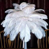 Wholesale White Marabou - Beautiful Marabou Feathers For DIY Bridal Wedding Crafts Millinery Card Decorate Wedding Ostrich Feathers Wedding Decoration Supplies