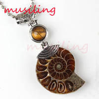 Wholesale Love Amulet Pendant - Half Ammonite Conch Fossil Pendants Necklace Gem Stone Bead Pendant Pendulum Jewelry Charms Reiki Healing Amulet Fashion Mens Jewelry