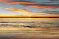 pintura al óleo libre del océano al por mayor-Surf arena Ocean Beach Amanecer Puesta de sol, envío gratis, pintura al óleo pintada a mano del arte marino pintado a mano en lienzo en cualquier tamaño personalizado