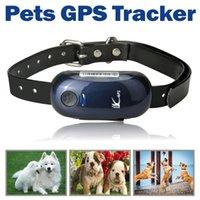 colliers de suivi pour animaux de compagnie achat en gros de-Mini Pet GPS Tracker Chien De Chasse En Temps Réel De Positionnement En Plein Air Tracking Locator avec Collier En Cuir