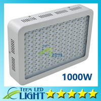 Wholesale Hydroponic Mini - Recommeded High Cost-effective 1000W LED Grow Light with 9-band Full Spectrum for Hydroponic Systems mini led lamp lighting led lights 888