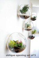 Wholesale Planter Set - A set of 5 empty bubble shape glass wall terrariums   indoor planters   wall bowl  gardens  backdrop wall art decorated