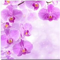 Wholesale Orchid Paintings Canvas - New DIY 5D Mosaic Diamond Painting Cross Stitch kits red and blue orchid full Resin round Diamonds Embroidery needlework Home Decor yx0286