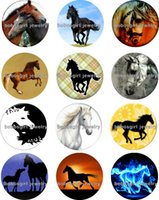 Wholesale Horses Music - Free shipping horse Snap button Jewelry Charm Popper for Snap Jewelry good quality 12pcs   lot Gl230 jewelry making DIY
