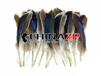 Wholesale blue wings costume - Leading Supplier CHINAZP 10~15cm(4~6inch) 100Pcs lot high Quality Blue Mix Mallard Duck Wing Wholesale Feather