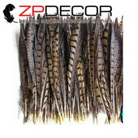 Wholesale 35 Inch Pheasant Feathers - ZPDECOR 35-40cm(14-16 inches) Unique and Special Natural Showgirl Customes Lady Amherst Pheasant Tail Feathers for Fashion Show