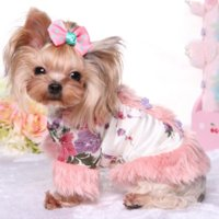 Wholesale Chinese Dog Bows - Luxury Chinese Costume Pet Teddy VIP Dog Puppy Apparel Small Fragrant Wind Plus Velvet Jacket Girl Dog Clothes Pet Products Y399
