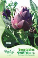 Wholesale French Seeds - Vegetable Seeds Purple Artichoke Seed Perennial Purple Thistle French Lily 3pcs   Pack 3bags per lot