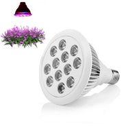 par38 wachsen licht großhandel-E27 24W PAR38 rot blau LED Lampe für Pflanzenwachstum LED wachsen Licht LED Hydroponic Plant Growth Lighting