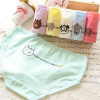 Wholesale Cartoons Underwears - Women Panties Cheap Mixed colors 12 pieces Candy Color Large Size Cartoon lady panties Briefs girls Student underwears woman underwear 025