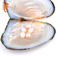Wholesale Bead Wholesale Free Delivery - BELAWANG Wholesale Fresh Water Oyster Pearl 7.5-8mm Natural Pearl 4 Colors Random Delivery Vacuum Packaging Farm Supply Free Shipping