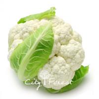 Wholesale cauliflower seeds resale online - White Cauliflower Vegetable Seeds Bag Easy to Grow from Seeds Heirloom Vegetable Seed