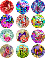 Wholesale Butterfly Music - Free shipping HOT butterfly Snap button Jewelry Charm Popper for Snap Jewelry good quality 12pcs   lot Gl260 jewelry making