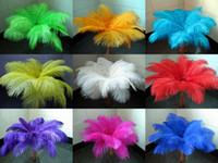 plumas de avestruz partido suministros al por mayor-Venta al por mayor mucho 12-14 pulgadas 30-35 cm hermosas plumas de avestruz para centro de mesa de la boda centros de mesa Partido Decoraction fuente FEA-001