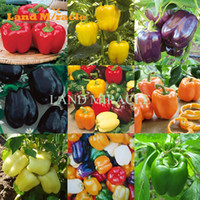 sementes de plantas orgânicas venda por atacado-100 Seeds, 9 cores Doce Pimenta misturada Sementes dos pimentões, vegetal comestível Paprika Orgânica plantas anuais