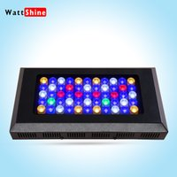 Wholesale White Blue Led Aquarium Reef - 2015 newest and High Quality 165W 3W Dimmable Led Aquarium Light Red Blue White 12 000K Coral Reef Led Lamp free shipping
