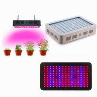 1000w 1200w led grow light Recommeded High Cost-effective Double Chips plein spectre a conduit à développer des lumières pour Hydroponic Systems