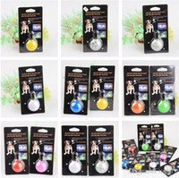 2016 nouveau Dog LED Flash Safety Night Light Keychain Tag Anti-lost Flashing Dogs Blinker Collars Equipment 9 couleurs Dog Tag Pet Supplies A0005