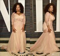 Wholesale Oscar Bride - 2016 Oscar Oprah Winfrey Celebrity Dresses Plus Size V Neck Sheath Chiffon With Long Sleeves Mother Of Bride Groom Dresses Evening