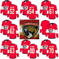 Wholesale brown panther - 2017-2018 Season Florida Panthers Jersey Blank 52 Mackenzie Weegar 54 Matt Buckles 61 Linus Hultstrom 62 Denis Malgin Custom Hockey Jerseys