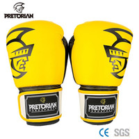 Wholesale Sports Protective Fitness Glove - 2016 Pretorian Grant Kickboxing Gloves Fitness Sport Equipment MMA Kickboxing Muay Thai Karate Luva Boxe Teakwondo Training Suit